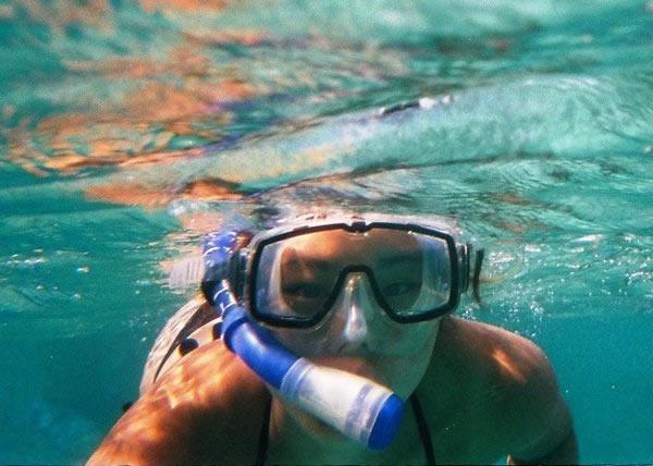 Excursion D'une Journée En Groupe Avec Plongée En Apnée Et Observation De Dauphins à Olbia Et Tavolara